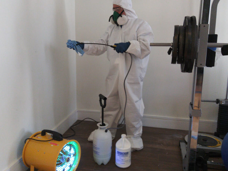 Only a professional technician should be used to properly disinfect your home.